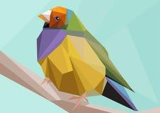 Niedriger Polyvogel Stockfoto