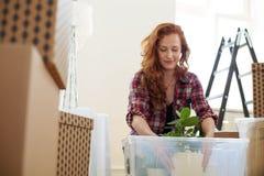 Niedriger Winkel auf der lächelnden Frau, die eine Anlage in einen Kasten während des rel verpackt stockfotos