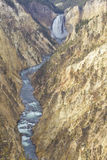 Niedrigere Yellowston Fälle, Wyoming lizenzfreie stockfotografie