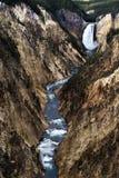 Niedrigere Yellowstone-Fälle Stockfoto