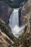 Niedrigere Yellowstone-Fälle Stockfotos