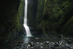 Niedrigeres Oneonta fällt der Wasserfall, der in der Westschlucht, Oregon gelegen ist Lizenzfreie Stockbilder