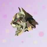 Niedriges Polygon der Katze Geometrische Illustration Stockfotos