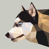 Niedriges Polygon des sibirischen Huskys Stockbilder