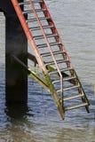 Niedrigwasser Stockfotografie