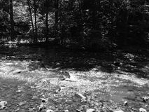 Niedrigwassernebenfluß Lizenzfreie Stockbilder