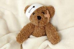 niedźwiadkowy chory miś pluszowy Zdjęcia Royalty Free