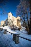 Niedzica, Polen, Winteransicht Lizenzfreies Stockbild