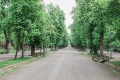 Niedziela rano spacer w parku w Cluj Napoca, Rumunia Obraz Royalty Free