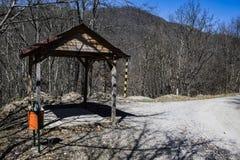 Niedziela spacer w lesie Zdjęcia Royalty Free