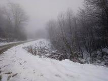 Śniegów lodowi drogowi drzewa halni zdjęcia royalty free