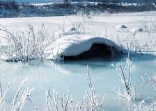 śnieg obraz stock