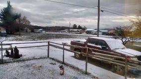 śnieg Fotografia Royalty Free