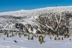 Śnieg dziury W Krkonose Gigantycznych górach, Czechia Zdjęcie Royalty Free