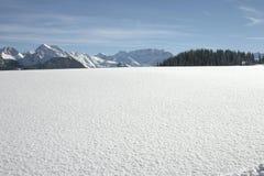 śnieg krajobrazu Obrazy Stock