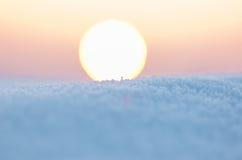 Śnieg na dachu Zdjęcie Royalty Free