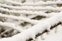 Śnieg na drutach Zdjęcie Royalty Free