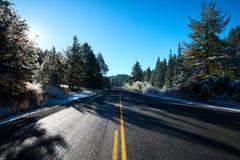 Śnieg na stronie droga w lesie fotografia stock