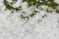 Śnieg na trawie Wiosna w górach Fotografia Royalty Free