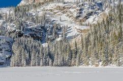 Śnieg Przez jezioro i sosny w Kolorado pustkowiu Obrazy Stock