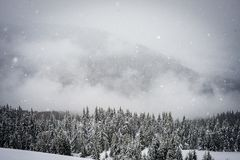 Śnieg spada w górach Zdjęcie Royalty Free