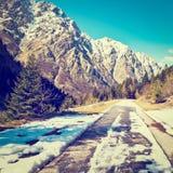 śnieg topnienia Fotografia Royalty Free
