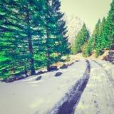 śnieg topnienia Obrazy Royalty Free