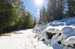 Śnieg w górach Fotografia Royalty Free