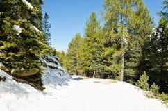 Śnieg w górach Obraz Stock
