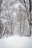 Śnieg w Nowy Jork Obraz Stock
