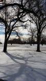 Śnieg w polu golfowym obrazy stock