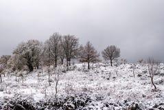 Śnieg w Sardinia Zdjęcia Royalty Free
