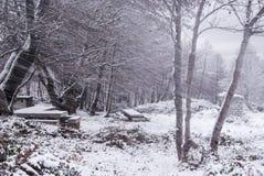 Śnieg w Sardinia Obrazy Stock