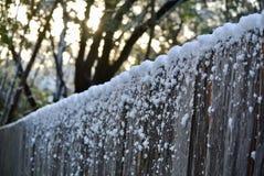 Śnieg w Teksas Obraz Stock