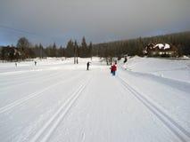 śnieg zabawa Zdjęcie Stock