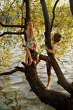 Niegrzecznej chłopiec i dziewczyny obsiadanie na gałąź nad wodą, śmiający się, mieć zabawy opowiadać Zdjęcie Royalty Free