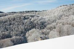 Śniegu krajobraz Obraz Stock