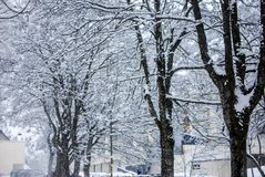 Śniegu krajobraz w zimie zdjęcia royalty free