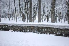 Śniegu krajobraz w zimie obrazy royalty free