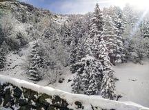 Śniegu krajobraz w zimie zdjęcie royalty free