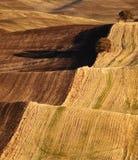 Niekończący się wzgórzy pola Zdjęcia Stock