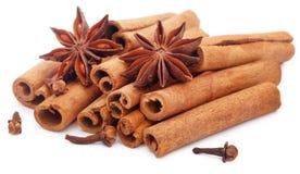 Niektóre aromatyczny cynamon z gwiazdowym anyżem i cloves zdjęcia stock