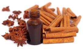 Niektóre aromatyczny cynamon z gwiazdowym anyżem i istotnym olejem obraz royalty free