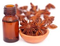 Niektóre aromatyczny cynamon z gwiazdowym anyżem i istotnym olejem zdjęcie royalty free