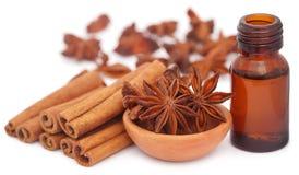 Niektóre aromatyczny cynamon z gwiazdowym anyżem i istotnym olejem zdjęcie stock