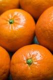 Niektóre clementines Zdjęcia Stock