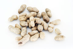 Groundnuts Fotografia Stock