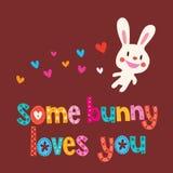 Niektóre królik kocha ciebie royalty ilustracja
