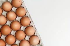 niektóre kurczaków jajka Zdjęcie Stock