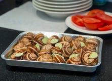 Niektóre ślimaczki na talerzu Zdjęcia Royalty Free